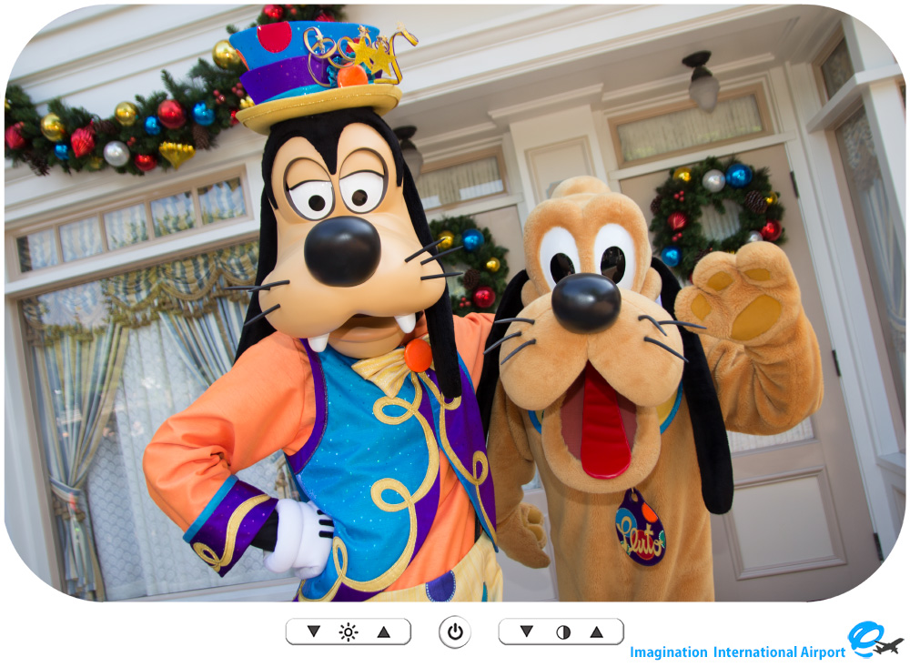 HKDL1512_CG_10th_GoofyPluto04